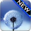 تم زیبای سامسونگ Galaxy S3 با Go Launcher Galaxy S3 Theme EX v1.0