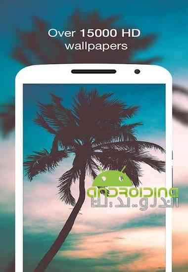 Wallpin HD Wallpapers & Backgrounds