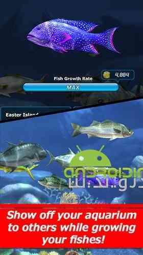 دانلود Ace Fishing Wild Catch 2.7.5 بازی ماهیگیری اندروید 3